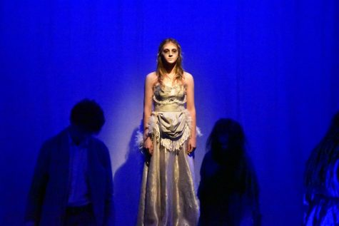 A Midsummer Night's Dream to Become a Shakespeare Professor