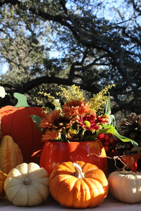 2020's Autumn holiday traditions will have to adapt to new restrictions this year due to COVID-19.