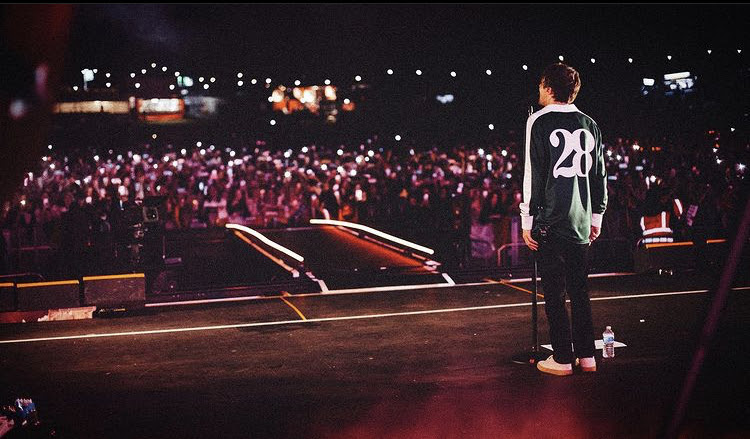 Louis Tomlinson performing at his festival at the Crystal Palace Bowl with all his fans.
